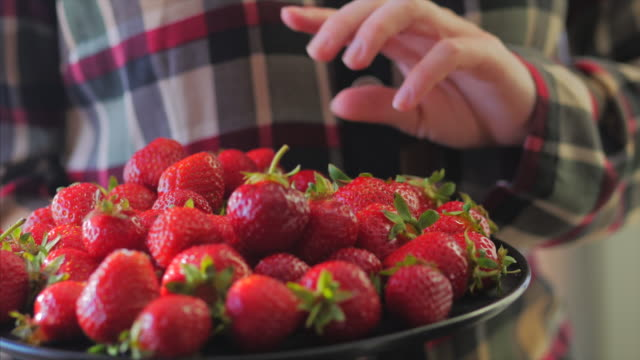Young Woman in Plaid shirt holding bowl of berries and taking a big ripe strawberry. No face, only hands. 4k video