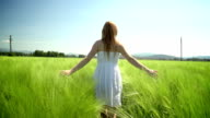 Young woman in white dress walking through green wheat field video