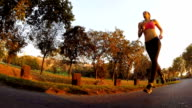 Young woman jogging in sunset video