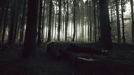 Young woman losing consciousness in the forest video