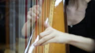 young woman playing harp video