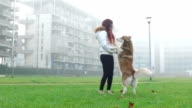 Young woman playing with her dog - Slow motion video