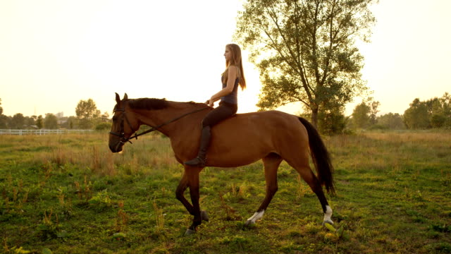SLOW MOTION: Young woman riding bareback on meadow field at golden summer sunset video