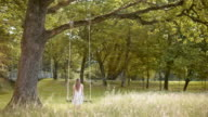 SLO MO DSA Young woman sitting an a swing in a beautiful park video