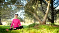 Young woman sitting in the grass and meditating video