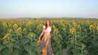 Young woman walking sunflowers field sunset video
