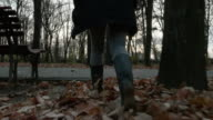 Young woman walking through the autumn leaves on an alley in the park video