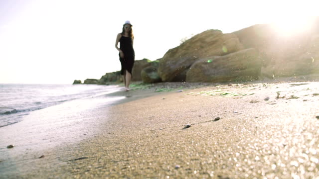Young woman walking with her puppy dog on the beach during sunset video