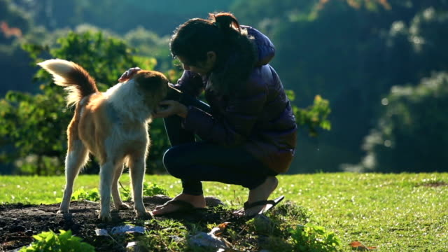 Young Woman with happy dog in the morning video