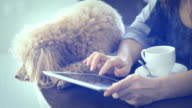 Young women is resting with a dog at home and using tablet . video