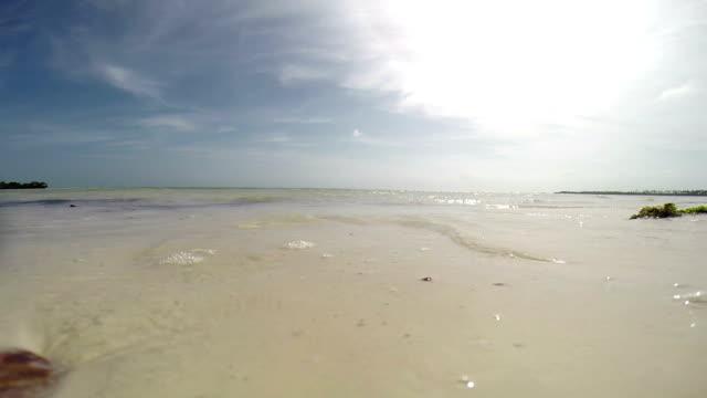 Zanzibar - Wave on the beach video