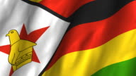 Zimbabwe Flag - waving, looping video