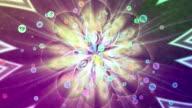 Zodiac FLOWER POWER video