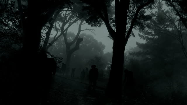 zombies in dark forest video