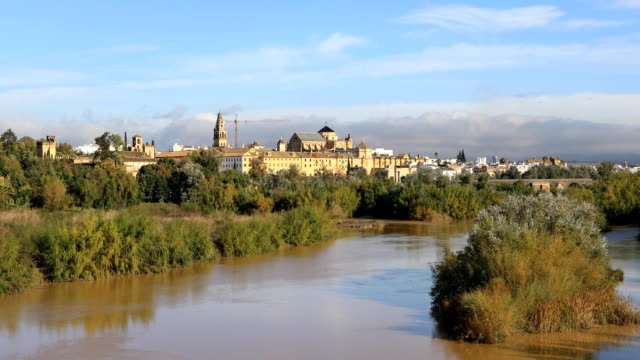 Zoom in view from San Rafael bridge on Cordoba cathedral video