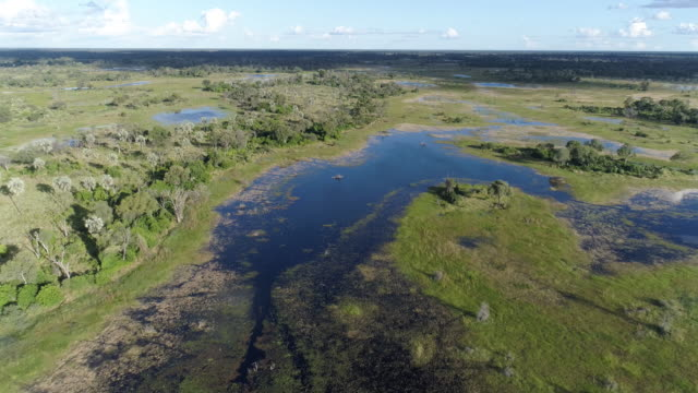 Zoom out aerial view of the waterways and lagoons of the Okavango Delta video