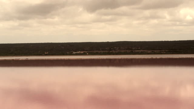 Zoom out from the Pink lake, Western Australia video