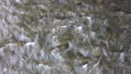 Zoom out - water flowing over a rock video