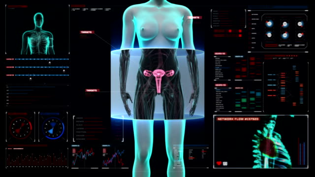 Zooming female body scanning womb in digital display dashboard. video