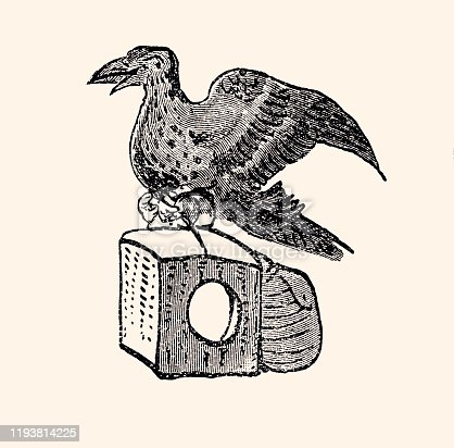 istock PIGEON CARRYING A PACKAGE (XXXL) 1193814225