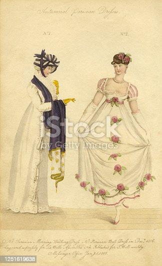 istock FASHION 1807: AUTUMNAL PARISIAN DRESS (XXXL) 1251619638