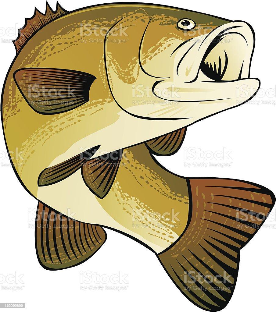 BASS FISHING royalty-free stock vector art