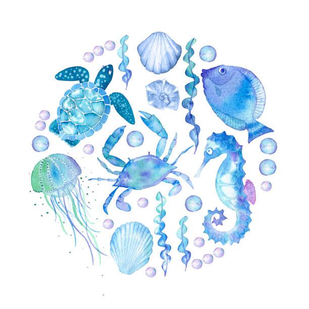 нарисованный вручную на белом фоне набор объектов на тему море - marine life stock illustrations