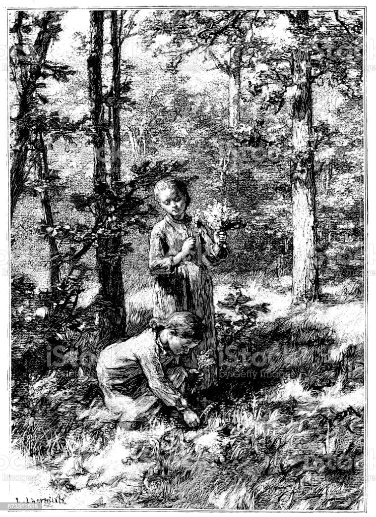 19th century engraving of children picking spring flowers in a woodland; Victorian childhood and nature  1890 - illustrazione arte vettoriale