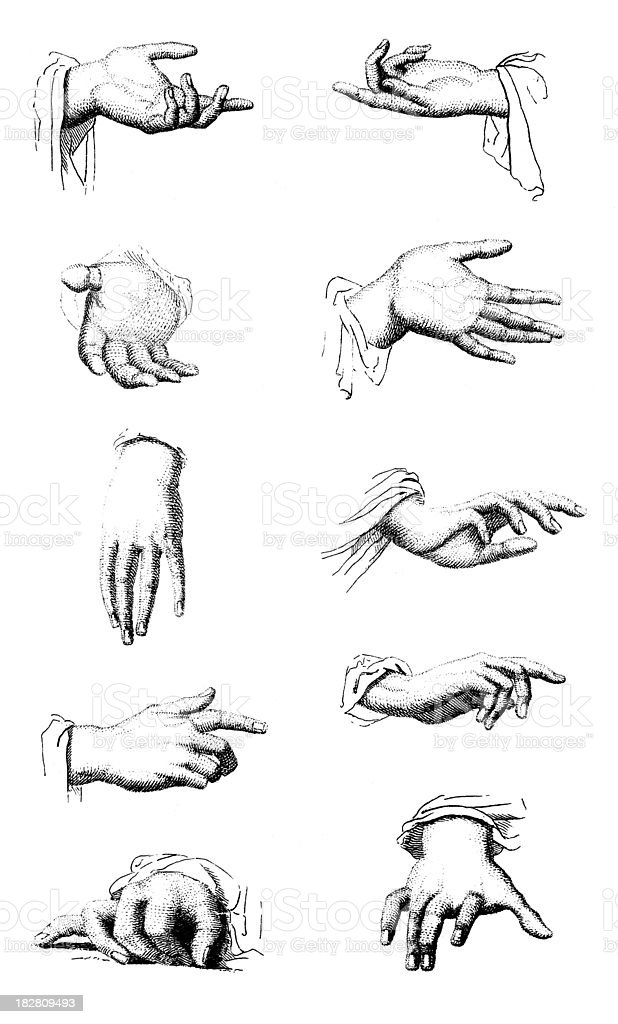19th century engraving of hands in different positions vector art illustration
