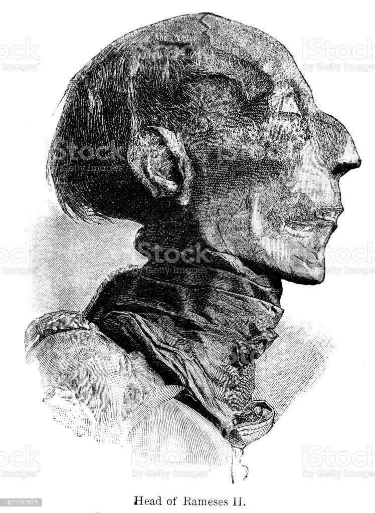19th century engraving of the mummified 'Head of Rameses II'; Victorian Egypt and its antiquities  1890 vector art illustration