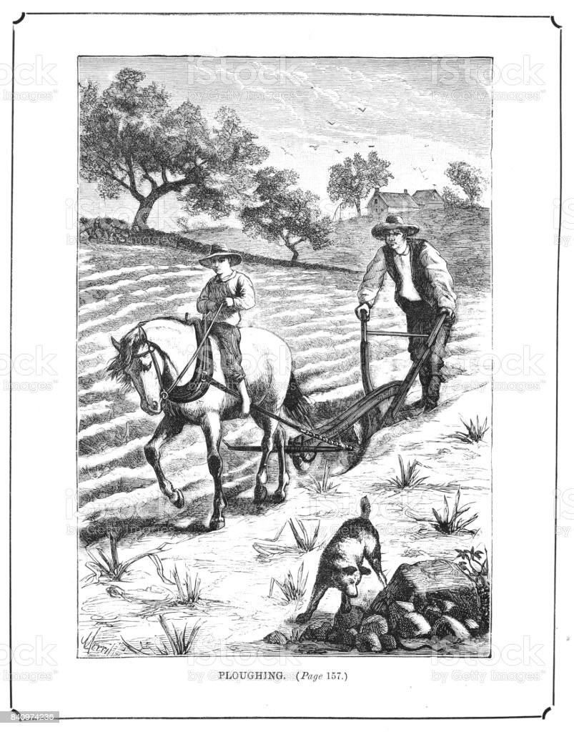 19th century etching of a man and boy 'Ploughing the Field' Victorian farming 1889 vector art illustration