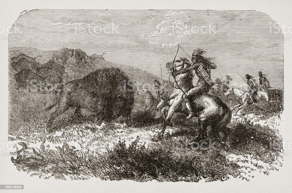 19th century illustration of indians hunting bisons vector art illustration