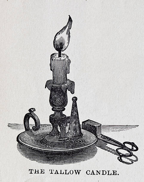19th century illustration Tallow Candle 19th century illustration of aTexture of the paper left on image for authenticity. It's easy to remove with some level adjustments if necessary candlestick holder stock illustrations