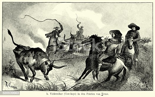 Vintage engraving of Cowboys in Texas rounded up and lassoing cattle. Ferdinand Hirts Geographische Bildertafeln,1886.
