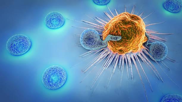 ilustraciones, imágenes clip art, dibujos animados e iconos de stock de ilustración 3d de una célula cancerosa y de linfocitos - cáncer tumor