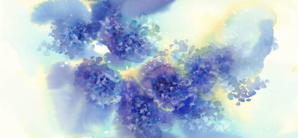 stockillustraties, clipart, cartoons en iconen met een boeket van blauwe bloemen, hortensia's aquarel illustratie - hortensia