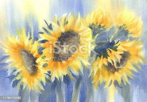istock a bouquet of sunflowers on blue watercolor background 1179172230