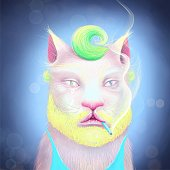 istock a portrait of a cat 1281620565