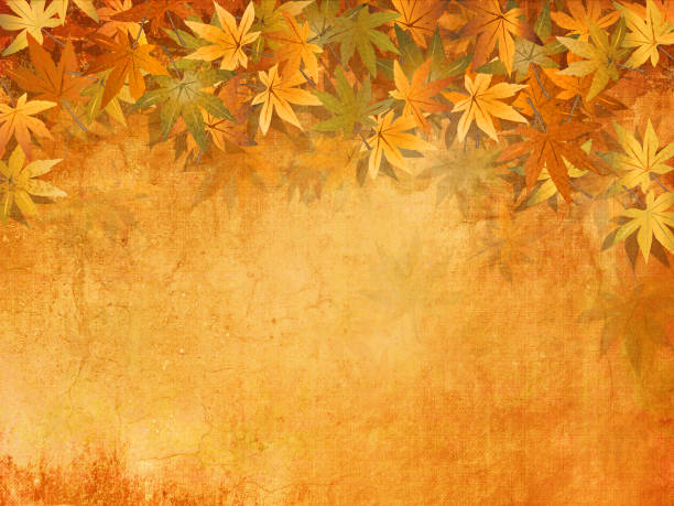 Abstract fall background with autumn leaves border - thanksgiving theme Digitally created backdrop with soft texture fall background stock illustrations