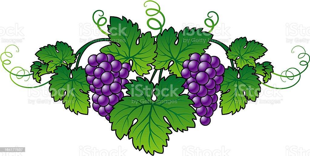 Abstract Grape royalty-free stock vector art