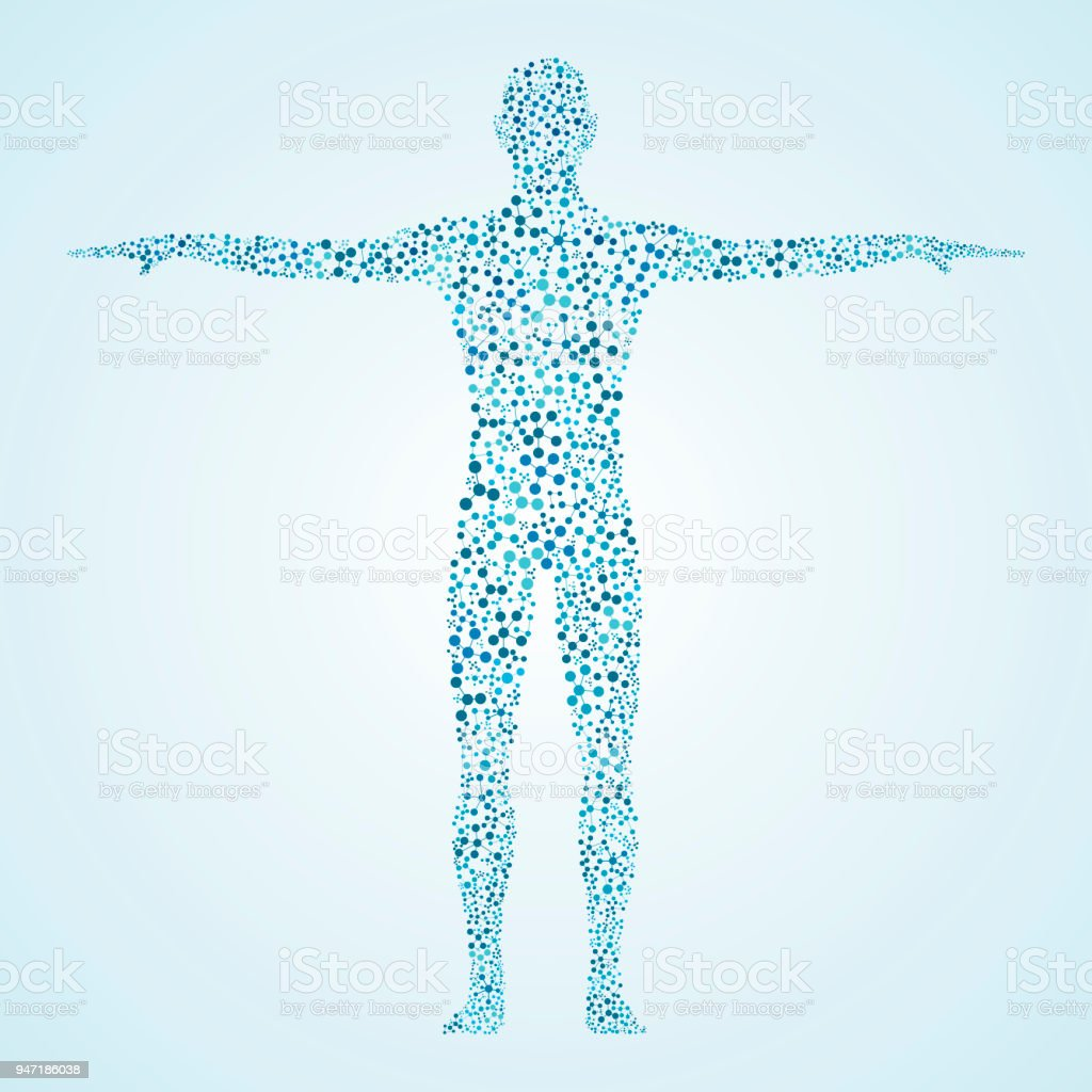 Abstrakt Menschliche Körper Mit Dnamolekülen Stock Vektor Art und ...