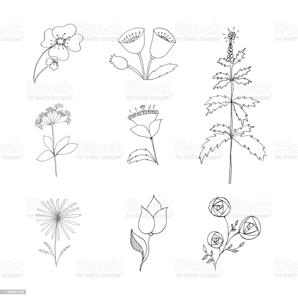 Abstract Icon On White Backdrop Floral Design Floral Border Grafic Flower Illustration Design Element Spring Blossom Classic Set With Black Simple Stylized Drawing Flower On Colorful Background For Paper Simple Design Textile