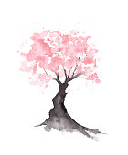 Original watercolor painting. Abstract Sakura cherry blossom tree painted with watercolor splatters.