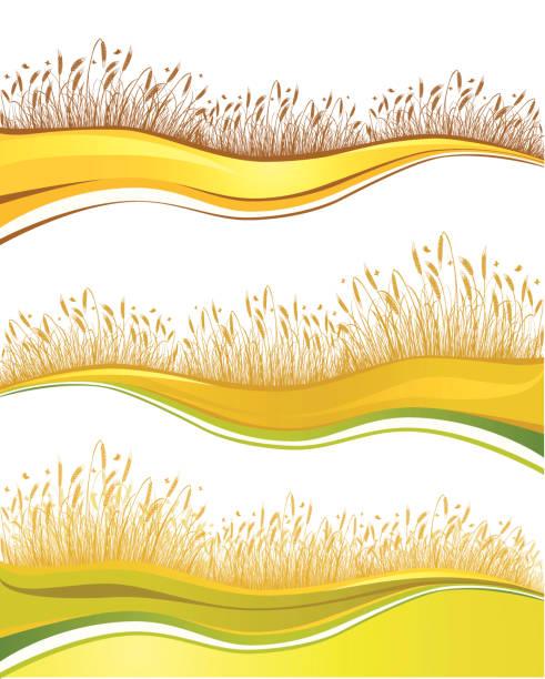 ilustraciones, imágenes clip art, dibujos animados e iconos de stock de abstract trigo campo - straw field