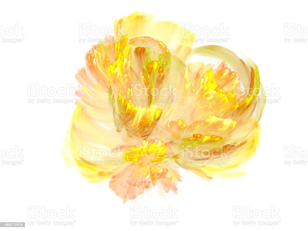 Abstract yellow flower on a white background vector art illustration