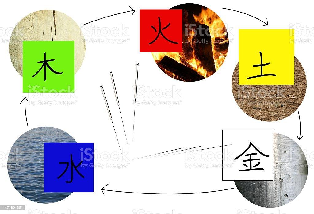 Acupuntura y los cinco elementos - ilustración de arte vectorial