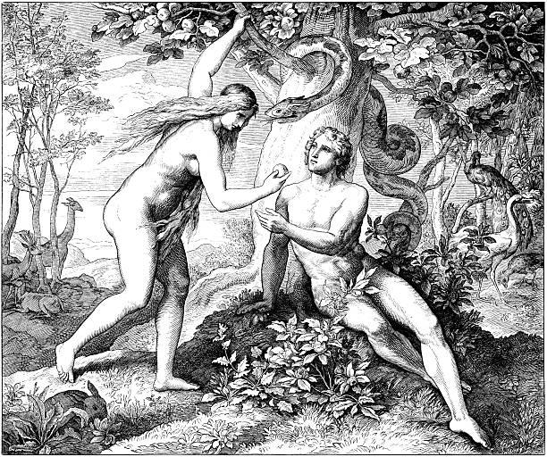 adam & eve eat forbidden fruit - mimari illüstrasyonlar stock illustrations