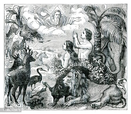 God Adam and Eve paradise illustration Original edition from my own archives Source : Biblische Geschichte 1882