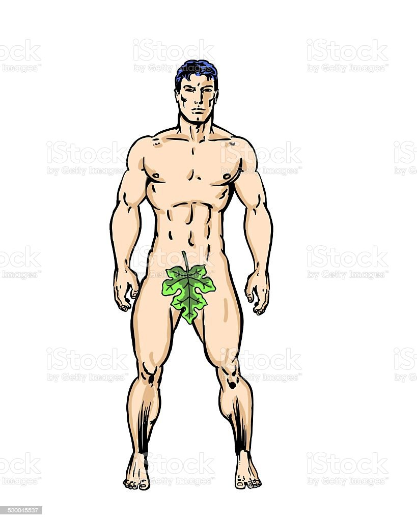 Adam from the garden of Eden comic illustrated character drawing vector art illustration