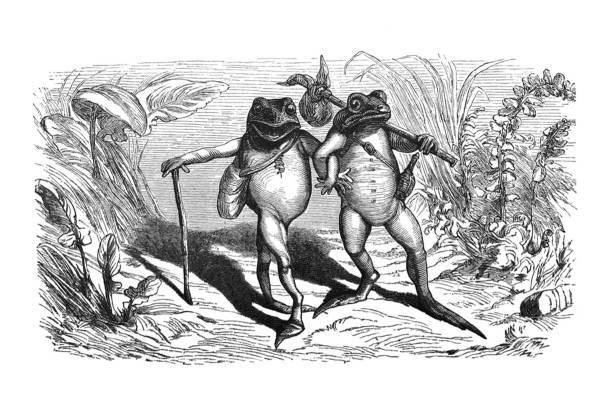 illustrations, cliparts, dessins animés et icônes de fables d'aesop-les deux grenouilles-illustration - partie du corps d'un animal